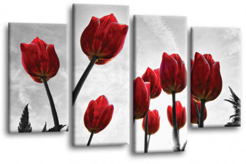 Floral Flowers Canvas Wall Art Picture Tulip Print Red White